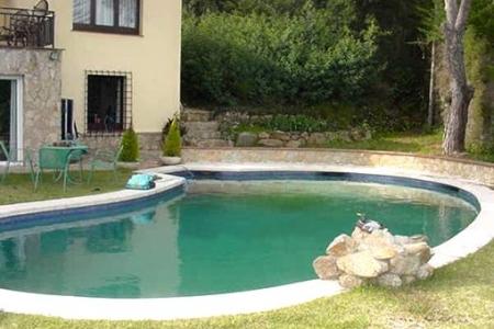 Lagunenförmiger Pool