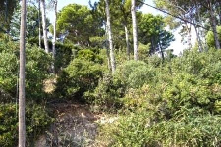 Parzelle in Sa Punta, Begur