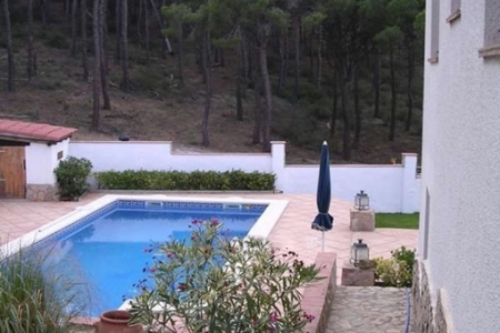 Pool auf der Terrasse mit anschließender Vegetation