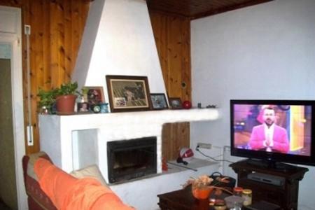 Haus-Wohnzimmer-Kamin-Roses